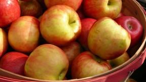 apple-muffins640x360