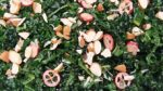 renata-kale-cranberry-almond-salad
