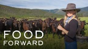 Food-Forward-COVE-16x9