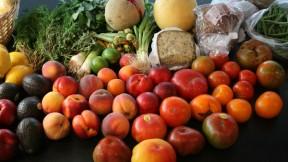 Tomatoes, Aspic, and Pasta Salad