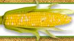 King Corn Eating Challenge