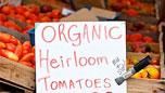 Jenna's Farmers' Market Trip