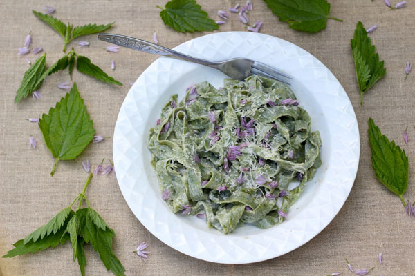 Nettle Fettucine Alfredo recipe