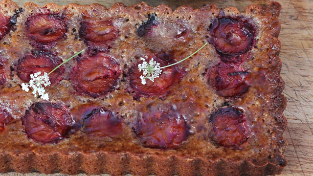 Plum Almond Tart recipe