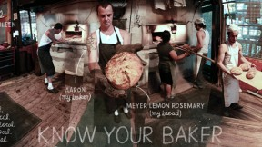 Lexicon-of-Sustainability-Art-Know-Your-Baker-Feat