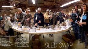 Lexicon-of-Sustainability-Art-Seed-Swap-Feat