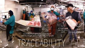 Lexicon-of-Sustainability-Art-Traceability-Feat
