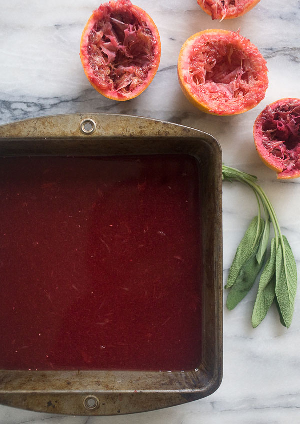 Blood Orange Granita recipe