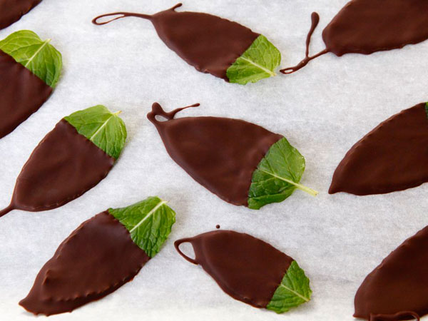 Dark Chocolate Mint Leaves recipe