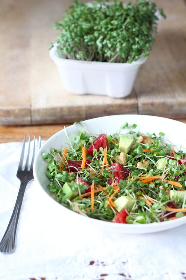Microgreens Salad recipe