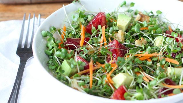 Homegrown Microgreens Salad Recipe Kitchen Vignettes