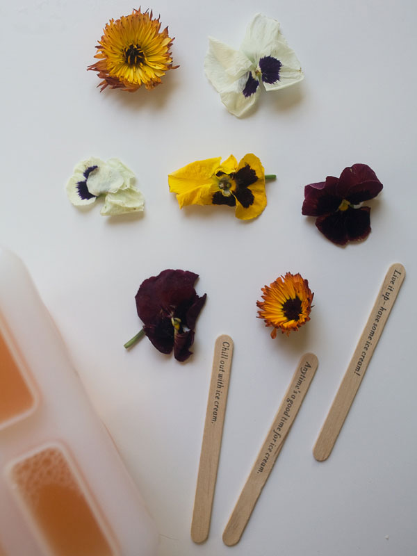 These refreshing Grapefruit Popsicles feature bright pink edible flowers.