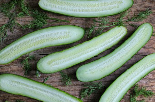 Cucumber Dill Yogurt Salad recipe