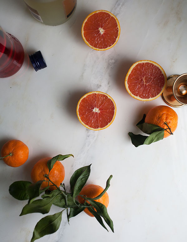 Winter Citrus Spritzer recipe