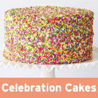 Celebration Cakes Episode
