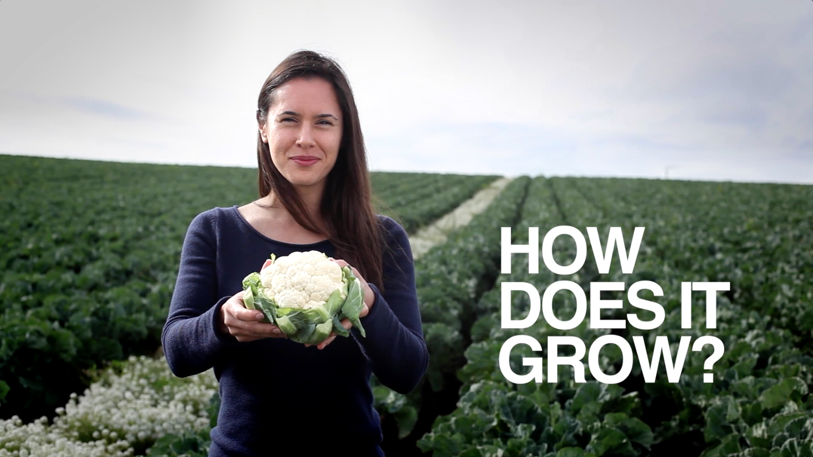 How Does It Grow: Cauliflower