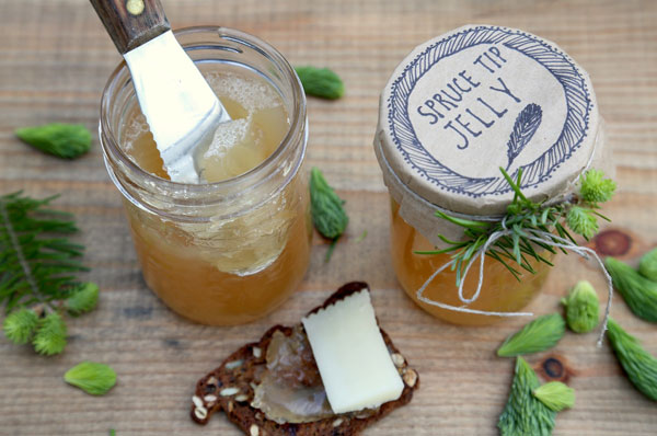 Spruce Tip Jelly recipe