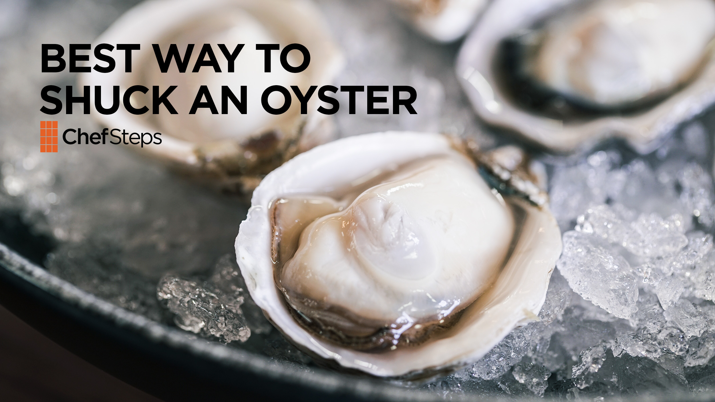 The Best Way To Shuck An Oyster Chefsteps Pbs Food
