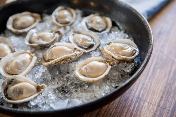 shuck-a-bunch-of-oysters