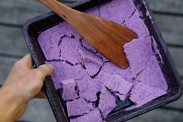 Wild Blueberry Frozen Yogurt recipe