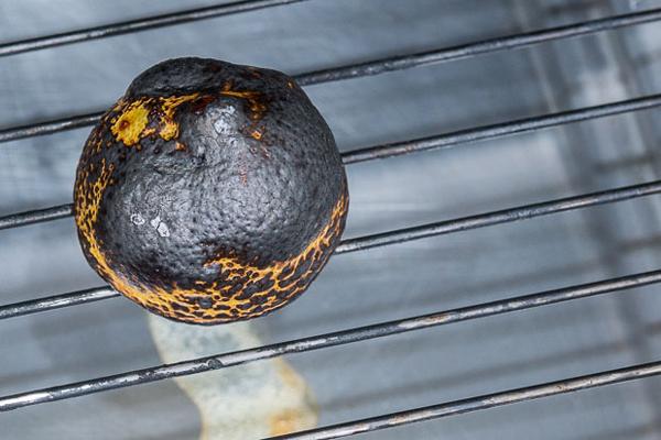 Burnt Lemon Chana Dal Soup recipe