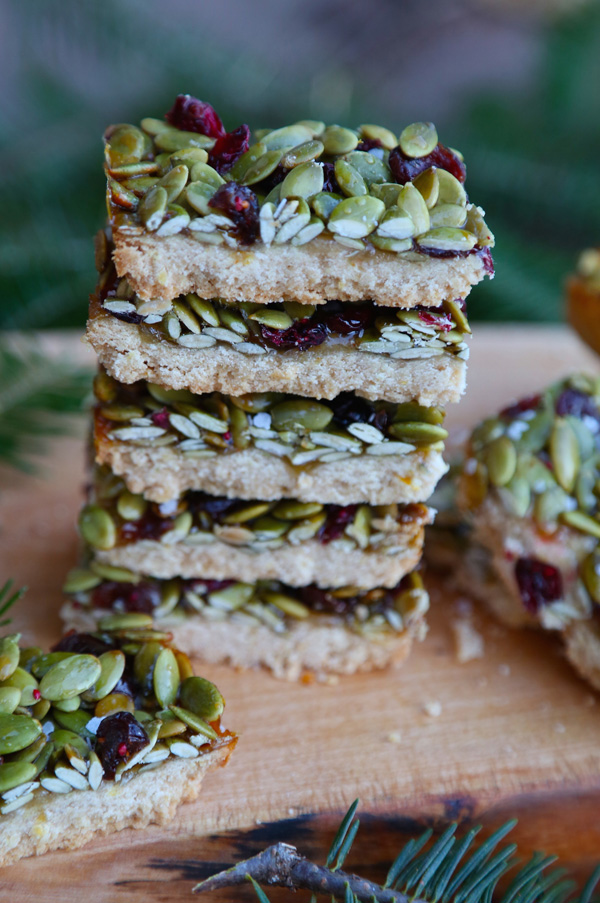 Salted Honey Cranberry Pumpkin Seed Bars recipe