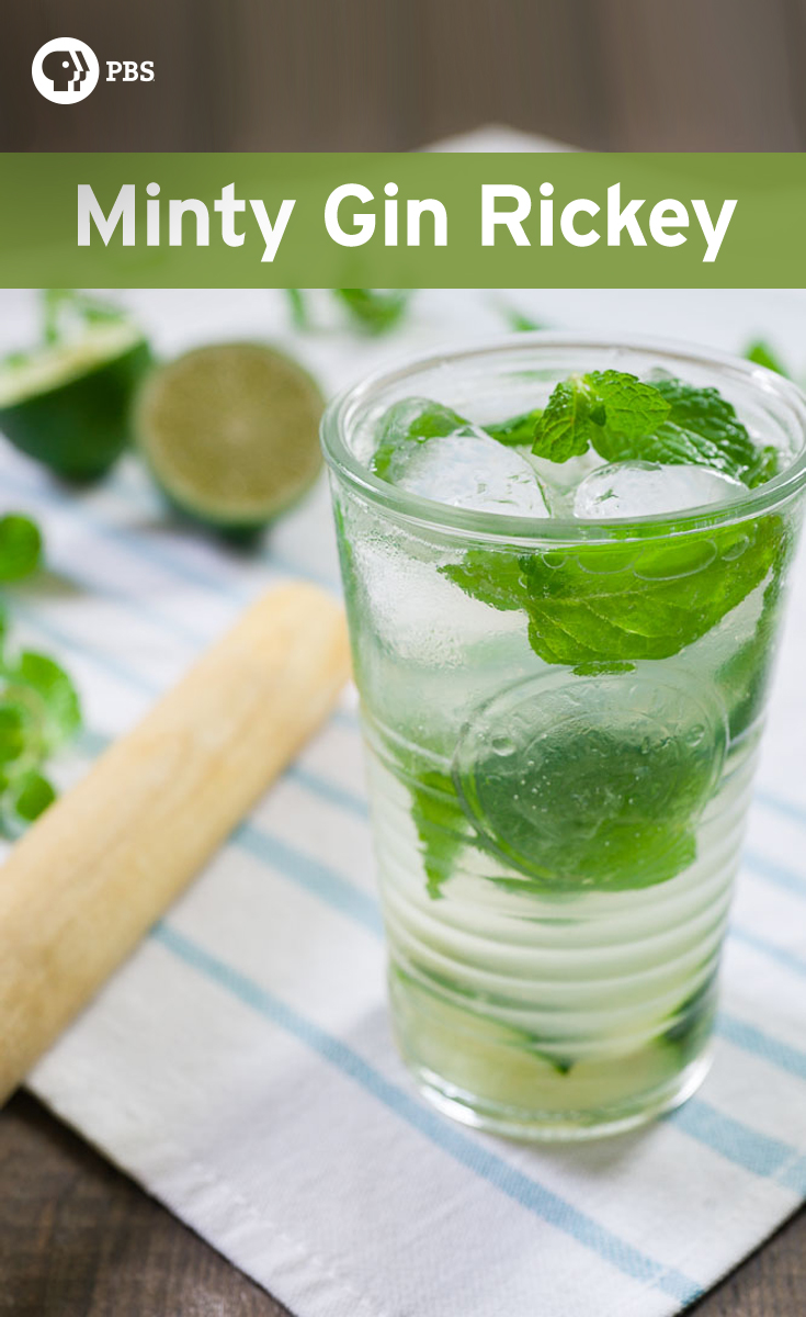 Similar to a mojito, this Minty Gin Rickey is made with gin, lime juice and club soda in an iced highball glass with muddled mint.