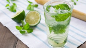 Minty Gin Rickey Recipe