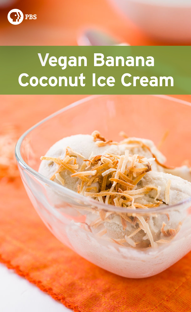 This Vegan Coconut Banana Ice Cream recipe comes together in less than a minute.