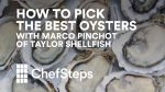 how-to-pick-the-best-oyster-thumbnail