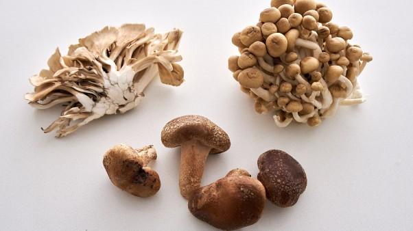 Yuzu Marianted Japanese Mushrooms