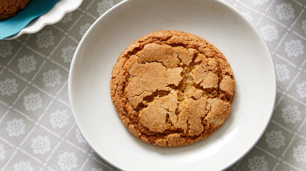 Martha bakes cookies of australia new zealand pbs food mbak 902 ginger nut biscuit recipe forumfinder Choice Image