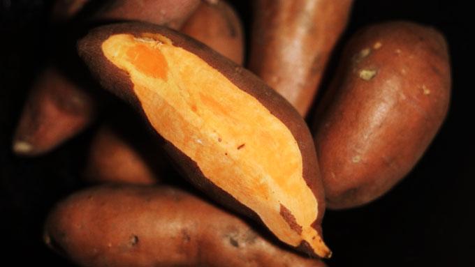 sweet-potato-recipes