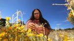 Karlos Baca | Harvesting