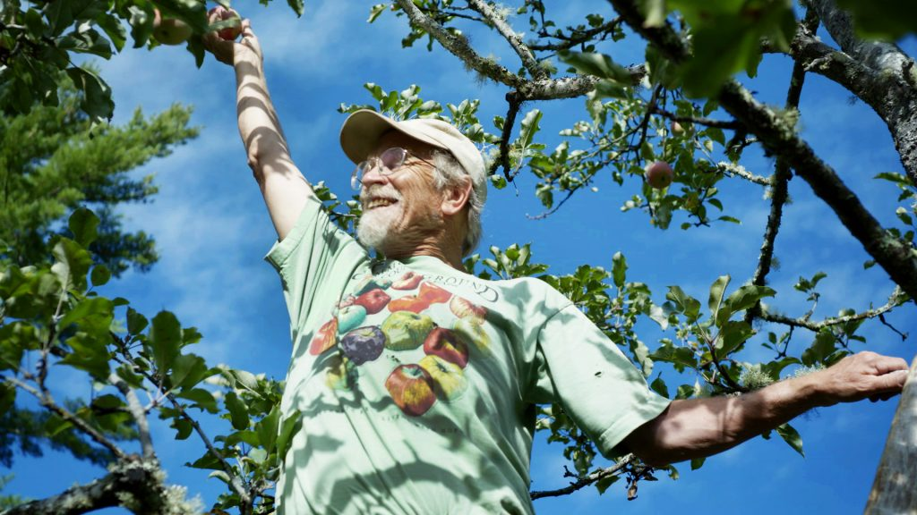 John Bunker in an apple tree