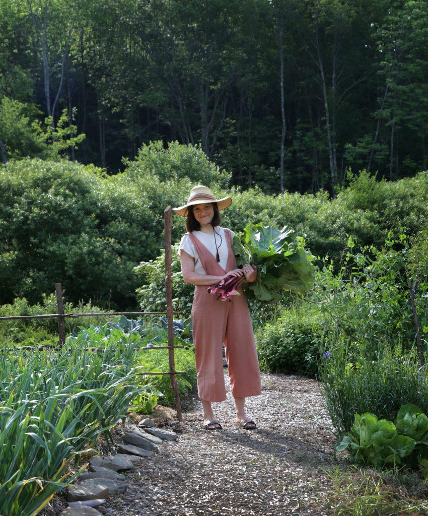 Jardin de rhubarbe