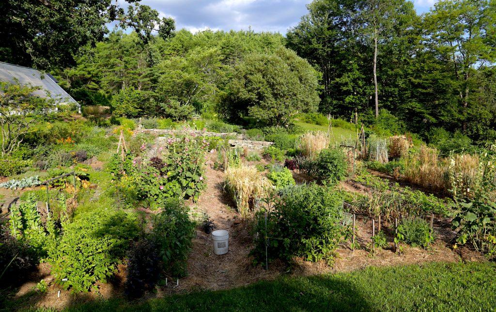 Sylvia Davatz Garden