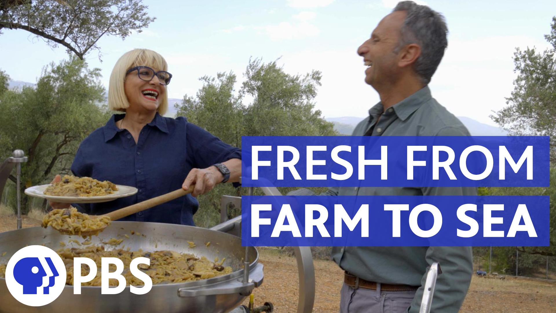 Life of Loi: Fresh from Farm to Sea