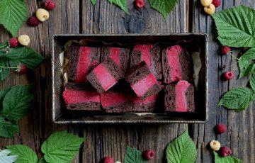 Vegan Raspberry Brownie Ice Cream Bars