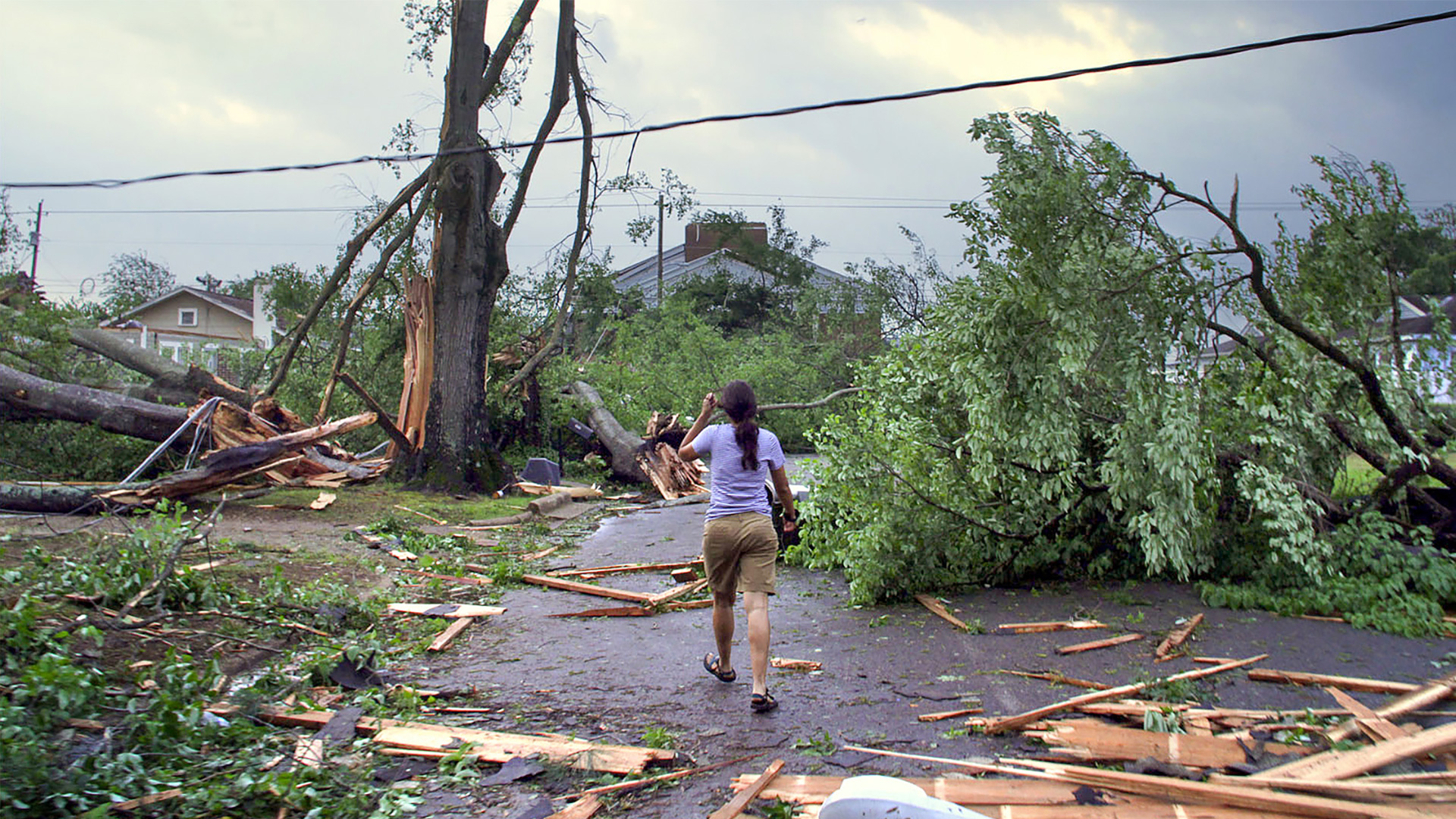 Woman walks through downed trees and debris after a tornado.