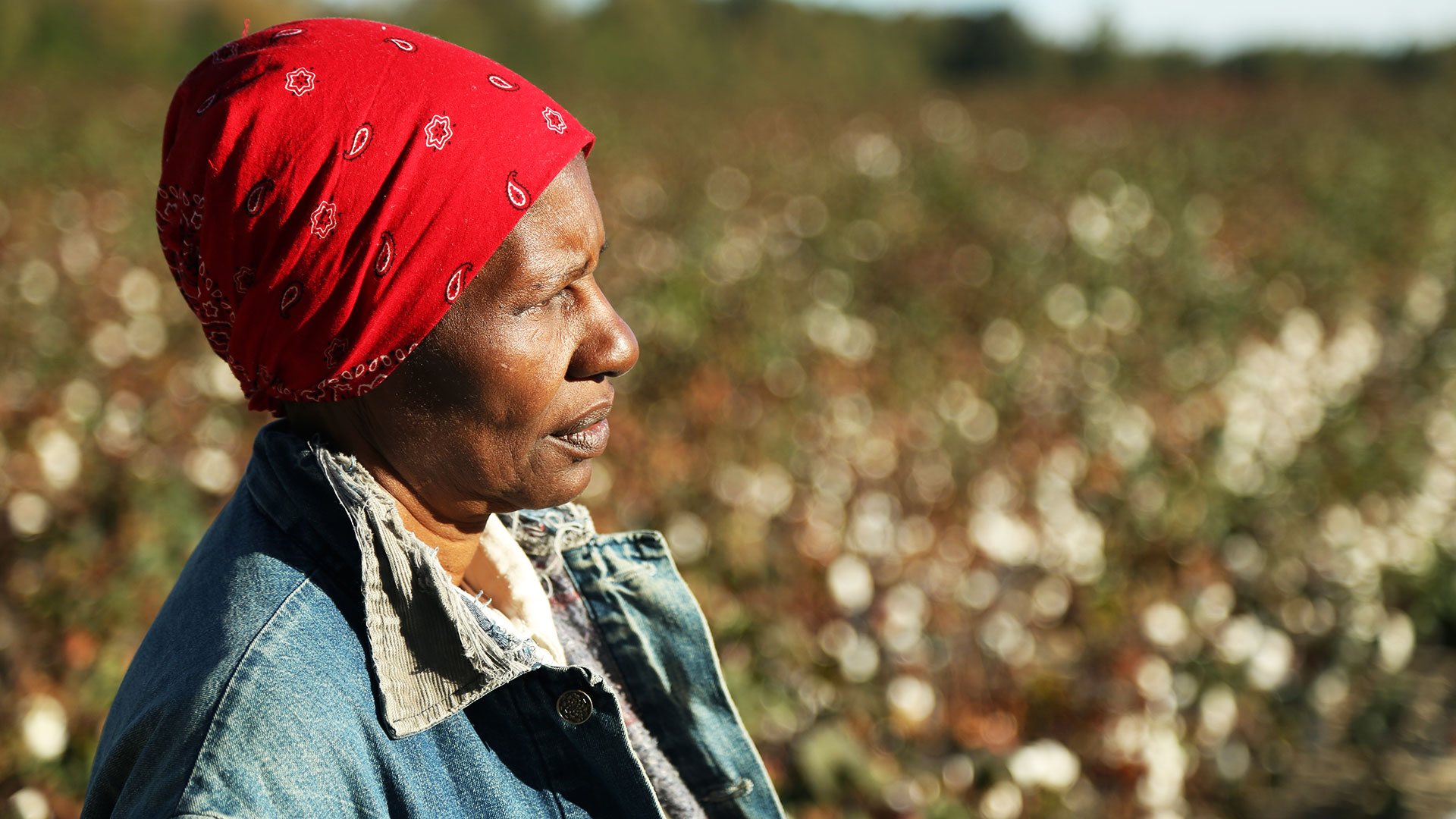 Wilhemina Dixon, star of Wilhemina's War, looks across a field, while wearing a red bandanna