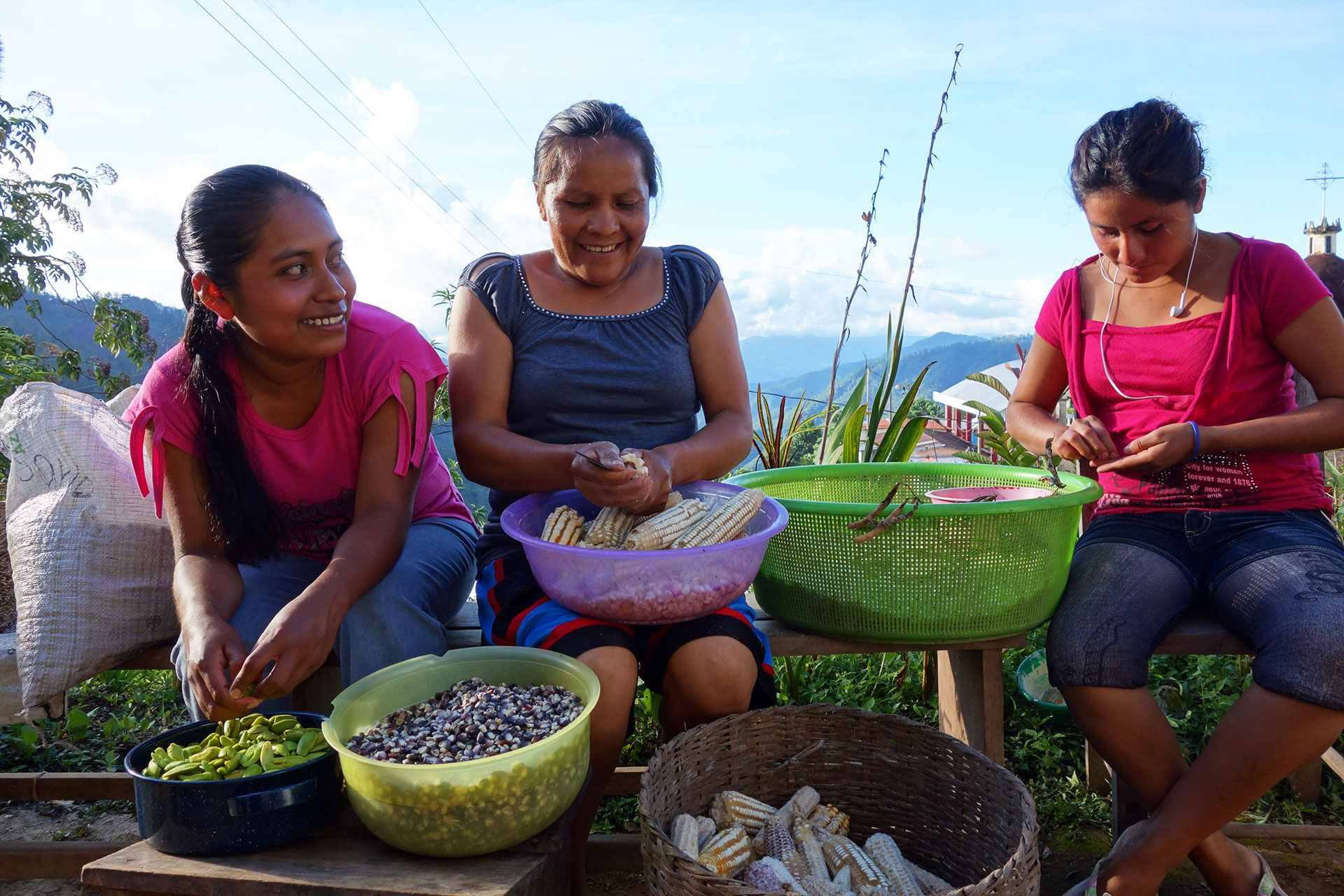 Women sort seeds from vegetables at a farm, fron SEED