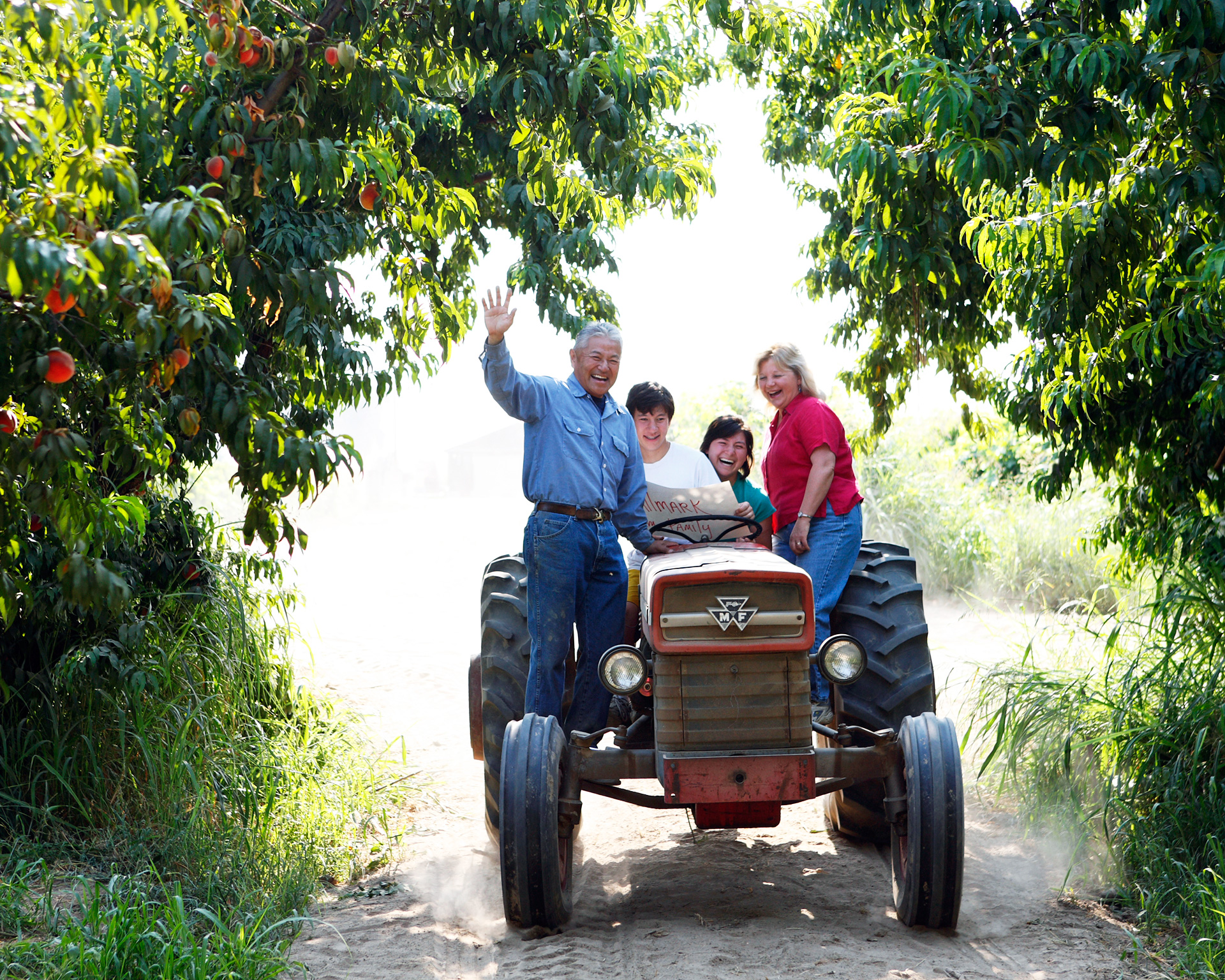 The Masumoto family farmers on a tractor in the Central Valley California peach farm