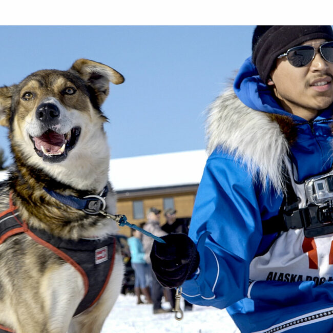 Joe Bifelt holding his lead dog, Happy, before the start of the 2015 Open North American sled dog race, from ATTLA