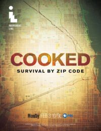 Thumbnail for: Cooked: Survival by Zip Code