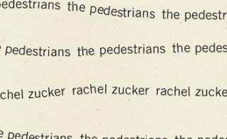 Rachel Zucker Pedestrians