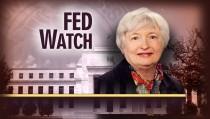 FED WATCH monitor yellin fed reserve