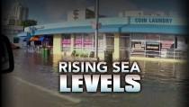Rising Sea Levels monitor