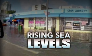 Rising Sea Levels monitor
