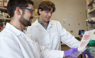 Two researchers look at data at Novartis Institutes for BioMedical Research in Cambridge, Mass. Critics say that the biomedical research field has too many scientists and not enough jobs. Photo by Flickr user Novartis AG